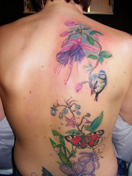 Schmetterling-Tattoo: Natur pur die 2. da piepst was