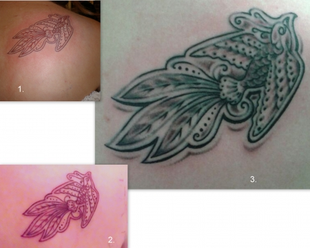 Paradiesvogel Cover-Up