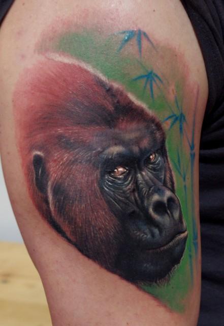 gorilla con kiel