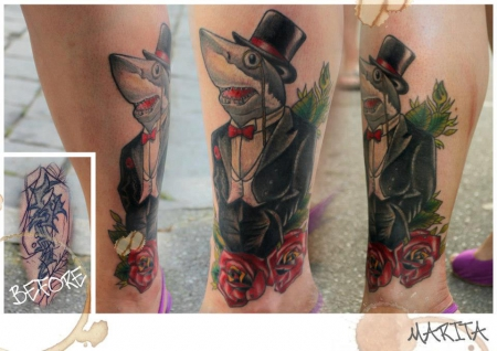 cover up mit hai