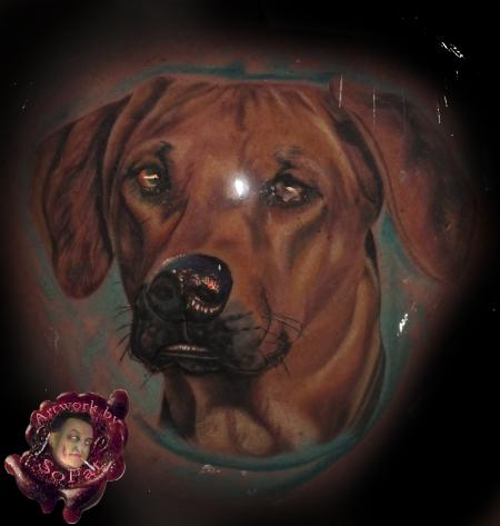 hunde hund by SoFat