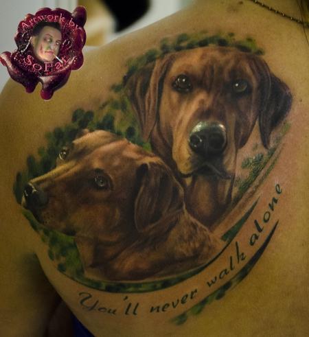 hunde hunde