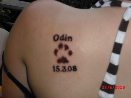 Mein 1. Tattoo: Hundepfote