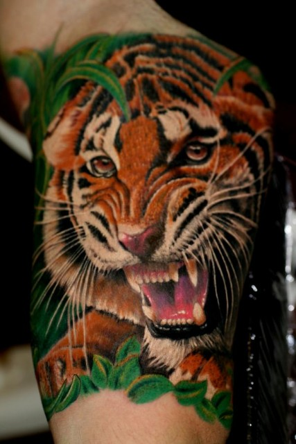 Tiger Innenarm, 5 stunden Arbeit