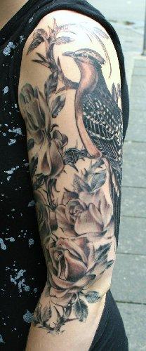 Vogel und Rosen