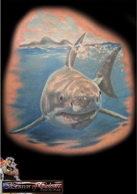 ratte-Tattoo: shark