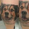 Hundeportrait <3