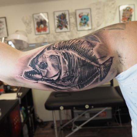 Piranha Skelett