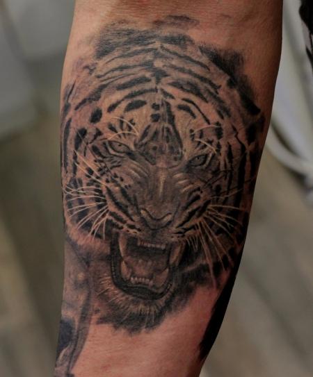 maniackilla tiger abgeheilt tattoos von tattoo. Black Bedroom Furniture Sets. Home Design Ideas