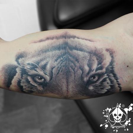 Tiger Innenarm