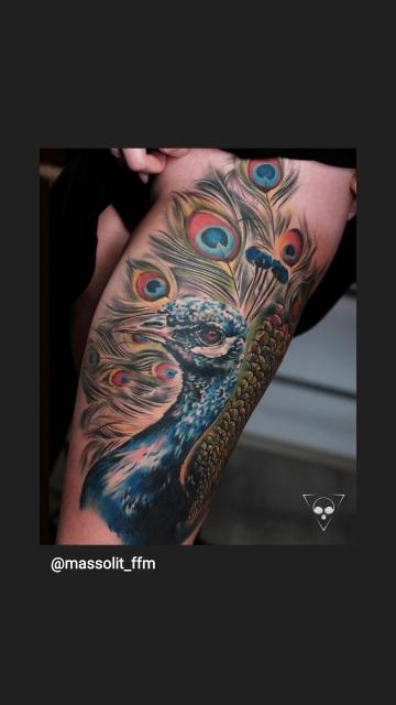pfau-Tattoo: Pfau