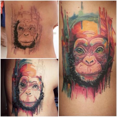 Bunter Affe - Monkey - Ape