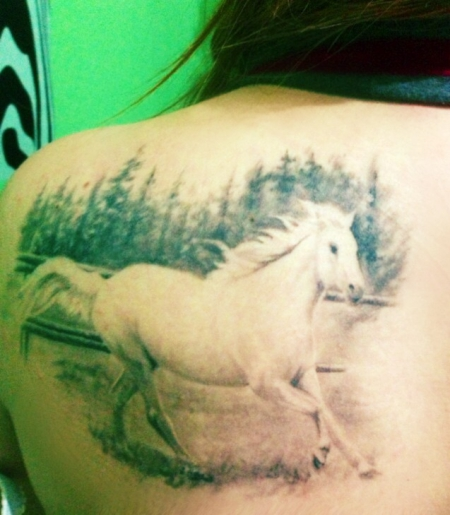 quattroangy mein pferd tattoos von tattoo. Black Bedroom Furniture Sets. Home Design Ideas