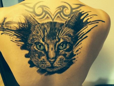 katze-Tattoo: Kater