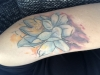 Lotus Blume Cover Up