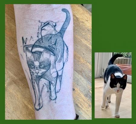 Sketch Katze Nr. 2, abgeheilt