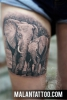 Elefant im schwarzen und grauen Realismus