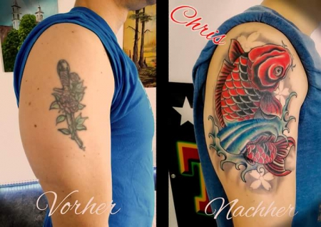 Cover up Koi