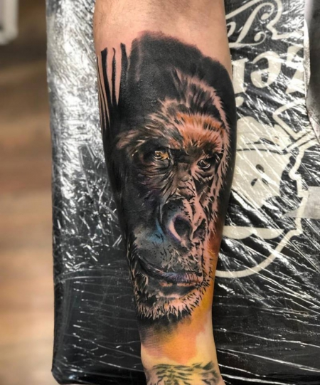farb realistik gorilla