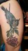 Rose und Vogel