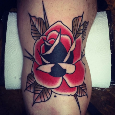 Knie Rose