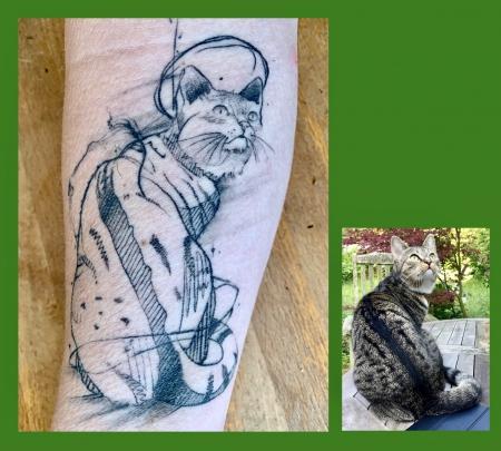 Sketch Katze, abgeheilt