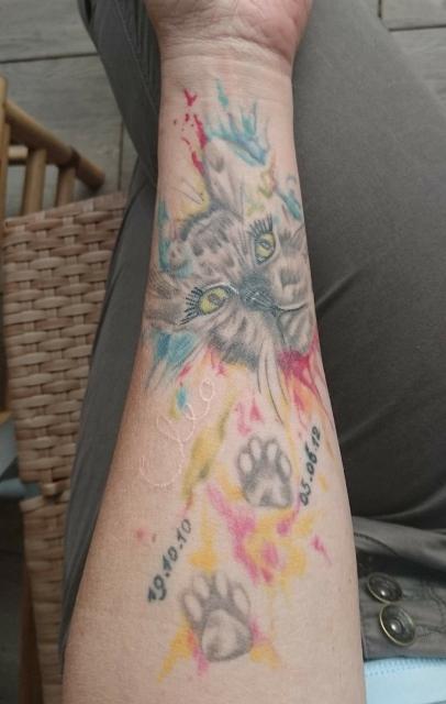 """Watercolour Katze """"Cleo"""""""