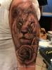 Löwen-Porträt mit Rosen