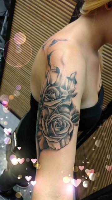 Rosen in den Freiheitsflug