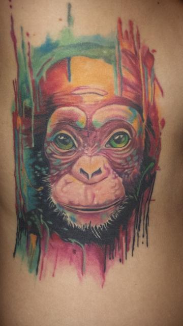 Affe Affenkopf Mono Monkey