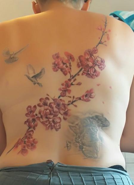 Afrika und Kirschblüten