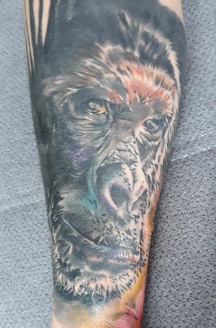 gorilla-Tattoo: gorilla komplett abgeheilt