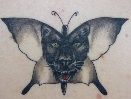 Panther mit Schmetterling