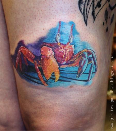 Crab watching sponge bob