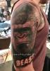Gorilla Porträt