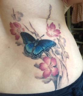 Schmetterling mit Kirschblüten