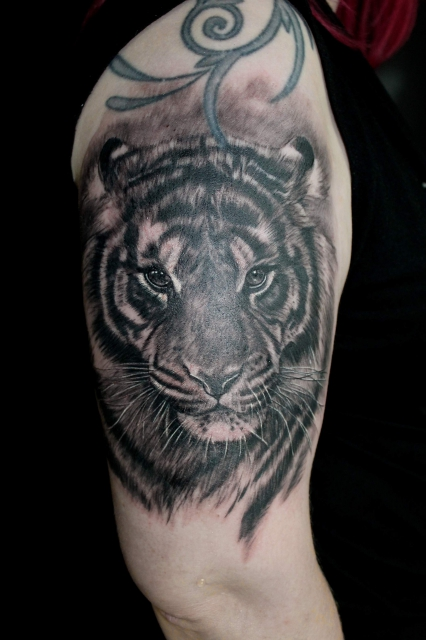 nicolefuchstattoos tiger oberarm tattoos von tattoo. Black Bedroom Furniture Sets. Home Design Ideas