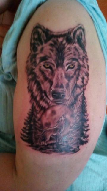 Wolf passt auf