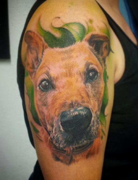 Hunde Porträt
