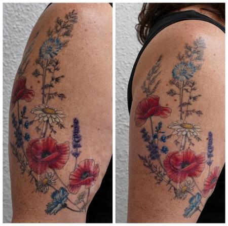 Wiesenblumen Mohn Lavendel Gänseblümchen Gräser Narben cover up
