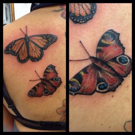 Schmetterlinge/ Natur