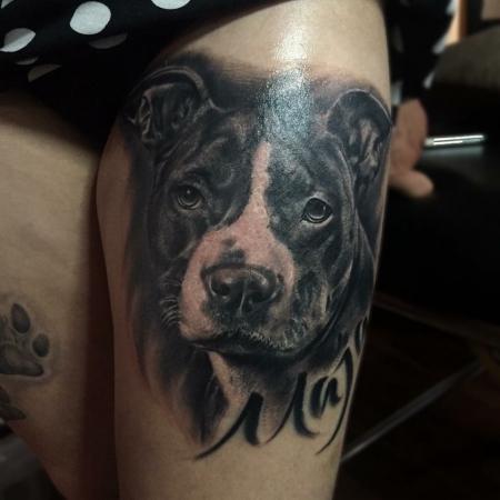 miastraore hunde portrait pit bull tattoos von tattoo. Black Bedroom Furniture Sets. Home Design Ideas