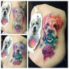 Hund Watercolor