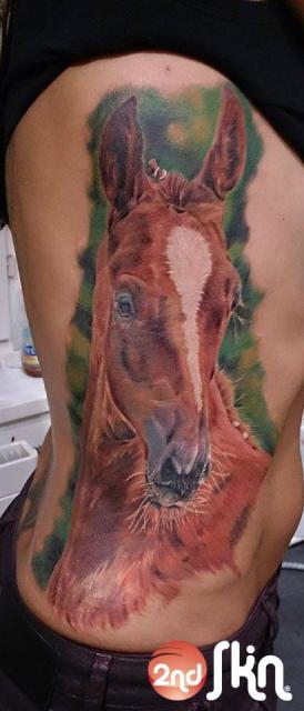 Portrait eines Pferdes by Gombi