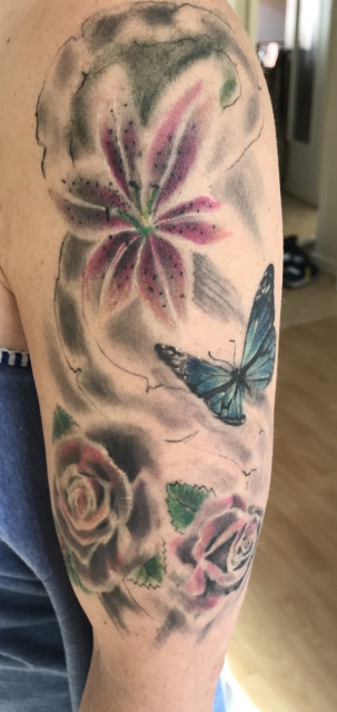 Blumen, Schmetterling, Käfer