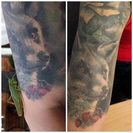 china-Tattoo: Fuchs 2 Jahre alt