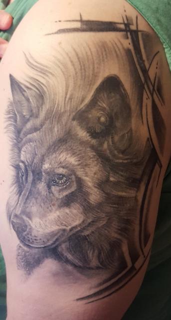 Wolf nach 5 Monaten