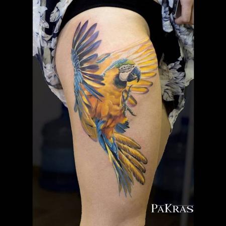 Papagei vom Gastätowierer Pavel Krasnyak