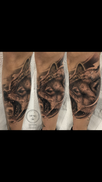 Finished this wolf today!