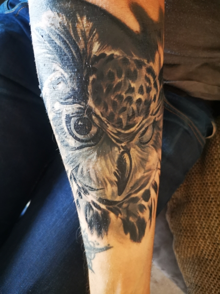 Eule Cover up
